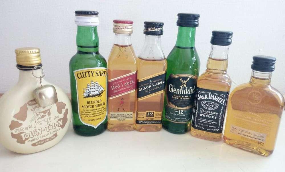 coleccion de whisky botellitaS MINIATURAS
