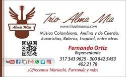 Trio Musical Alma Mia, Serenata de Cuerda, Musica Para Toda Ocasión, Cumpleaños, Trio Show Visconti