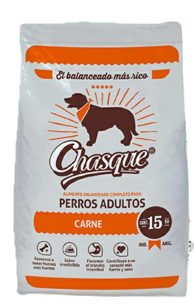 Casque Perro X15 kilos