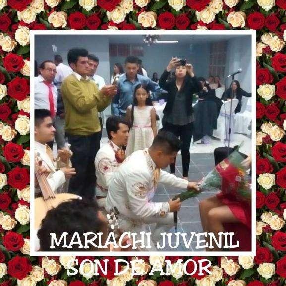 Mariachis juvenil Bogota - Servicios bogota - mariachis económicos bogota 3014899501