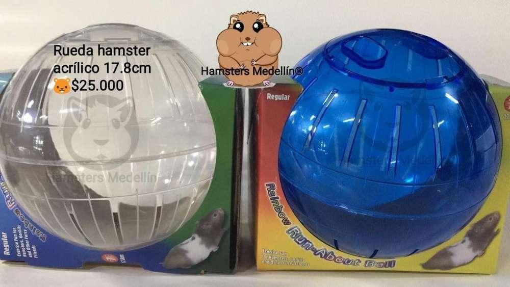 Esfera Hamster