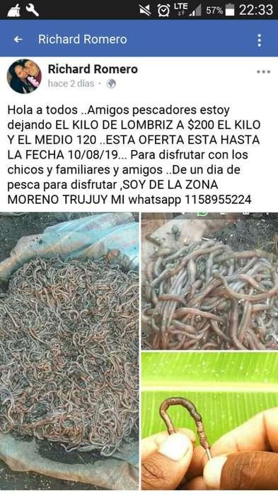 Zona Cruce Castelar Moreno 300el Kilo