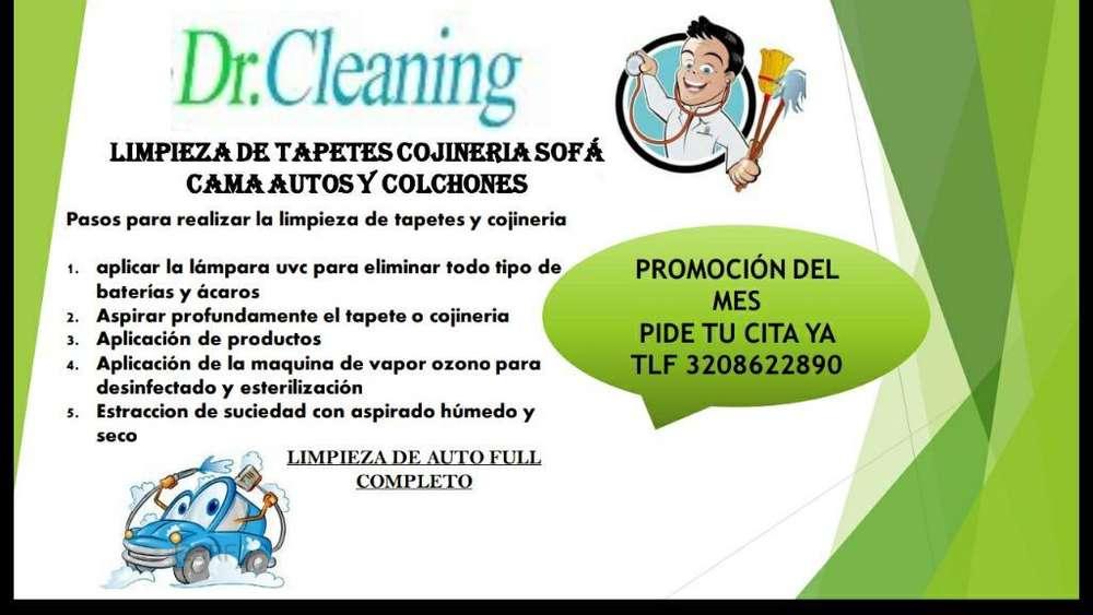 Limpieza de Tapicería Muebles Cojineria