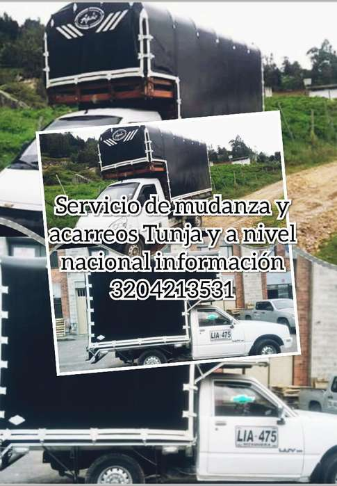 Servicio de Transporte 3178870331
