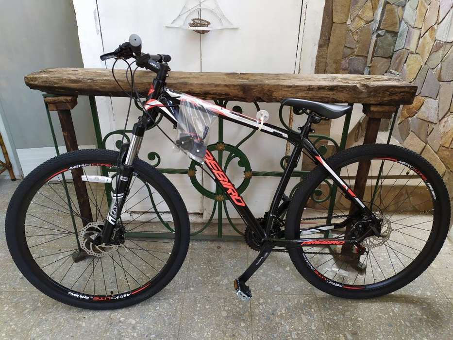 Bici Firebird R29 21v L Shimano Disco Al