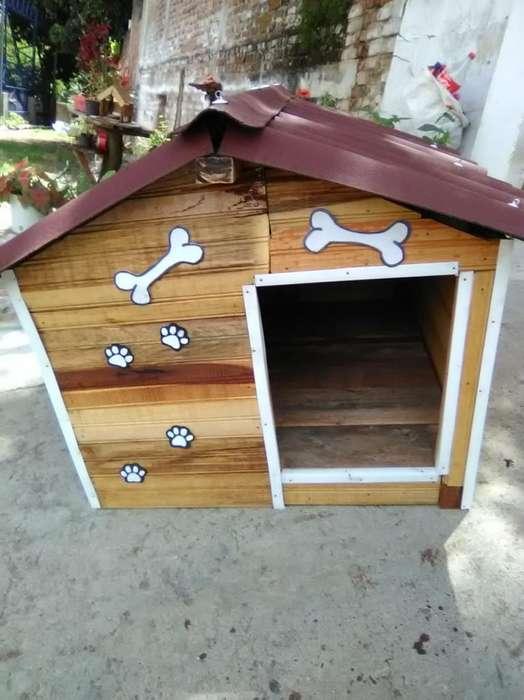 Casas para Perros Razas Medianas