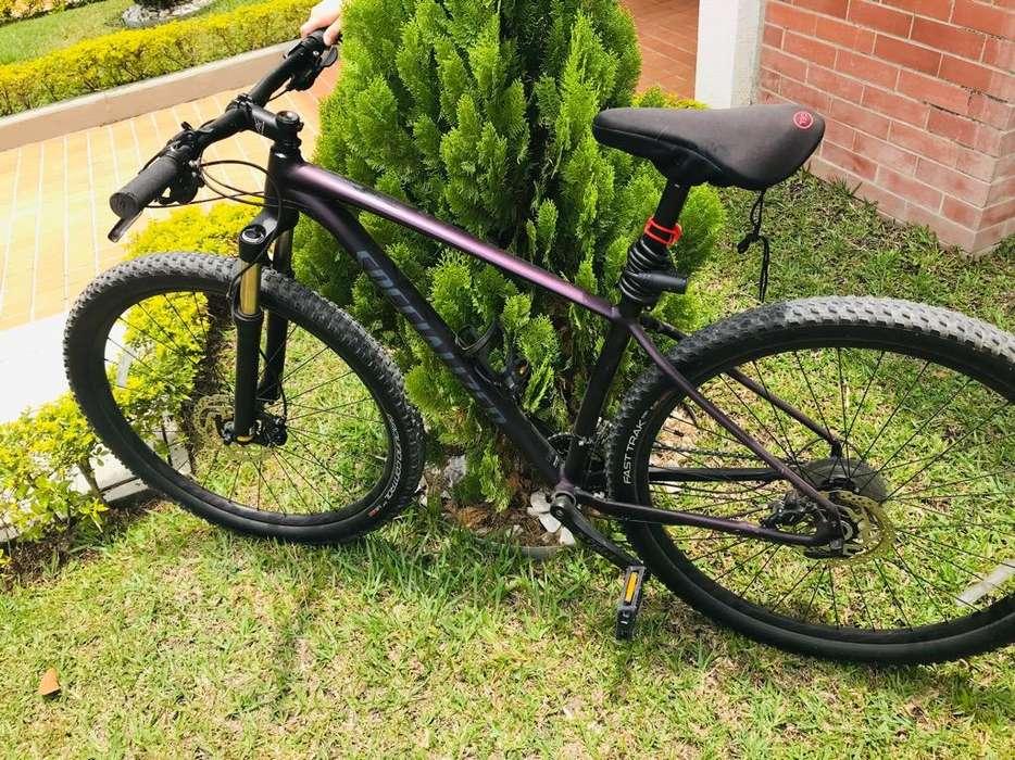 Bicicleta Specialized Expert
