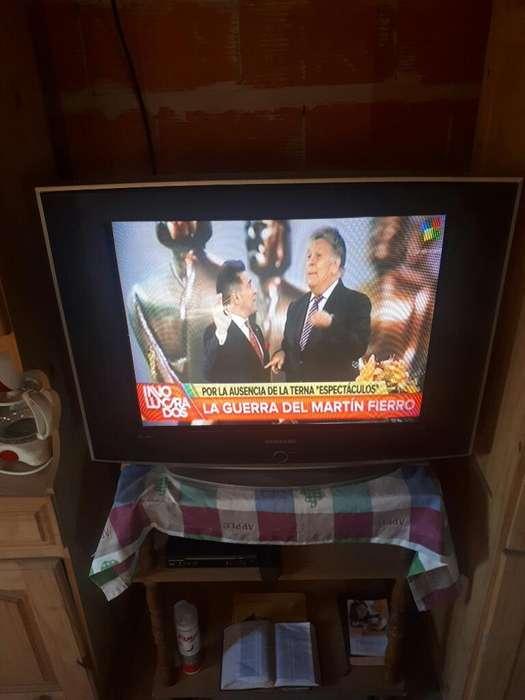 Vendo Tv 29 Samsung con Control