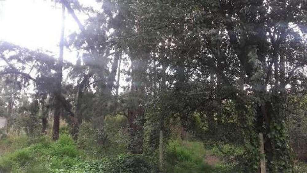 Arcos 100 - UD 135.000 - Terreno en Venta