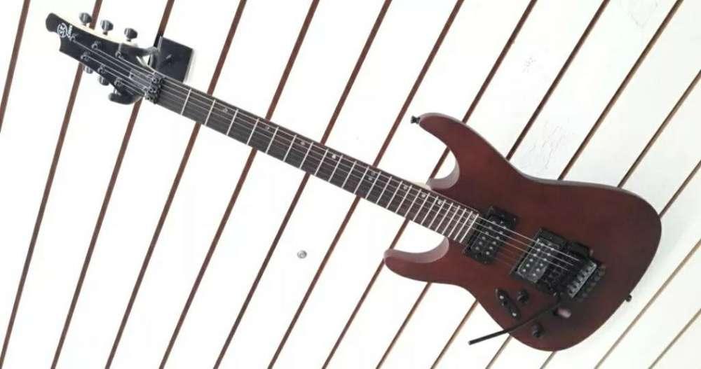 Guitarra Electrica Zurdo