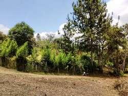 VIA A LA PARCELACION MONTERICO, MUNICIPIO DE DAGUA KM 21