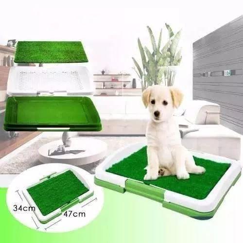 Baño Perros Puppy Potty Ecologico Gatos en OFERTA