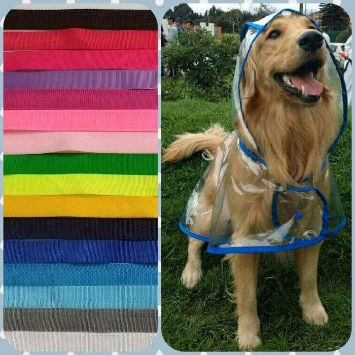 Capas para La Lluvia para <strong>perrito</strong>s
