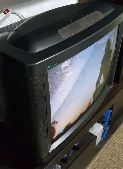 Vendo <strong>televisor</strong> Philco 29 pulgadas c/ control, surround y mesa