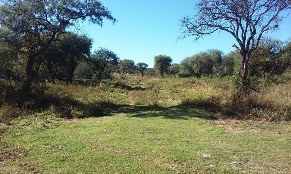 Excelentes terrenos en venta - Las Chacras, Juana Koslay