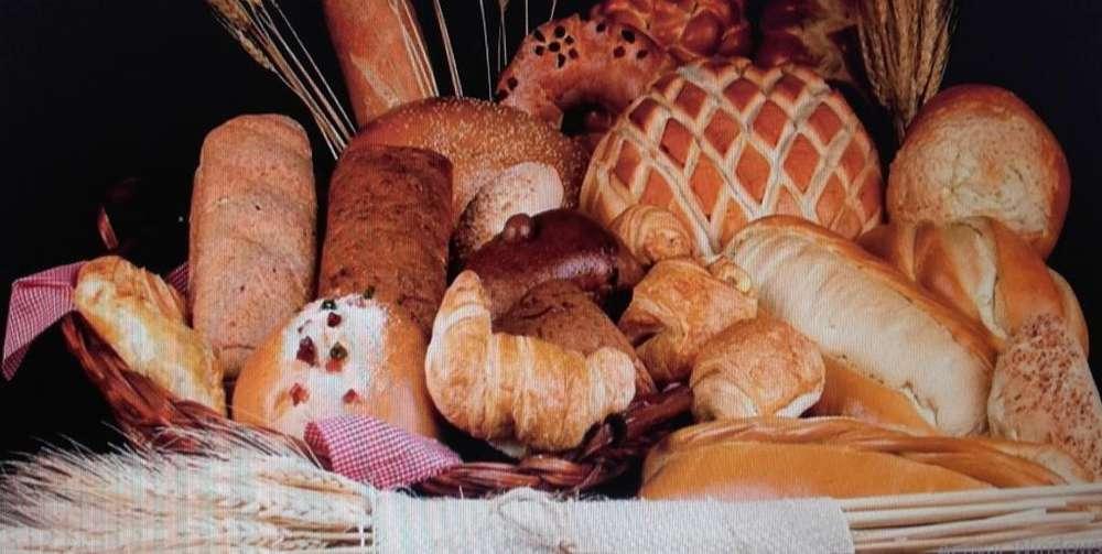 VENTA DE <strong>panaderia</strong> EN ARMENIA