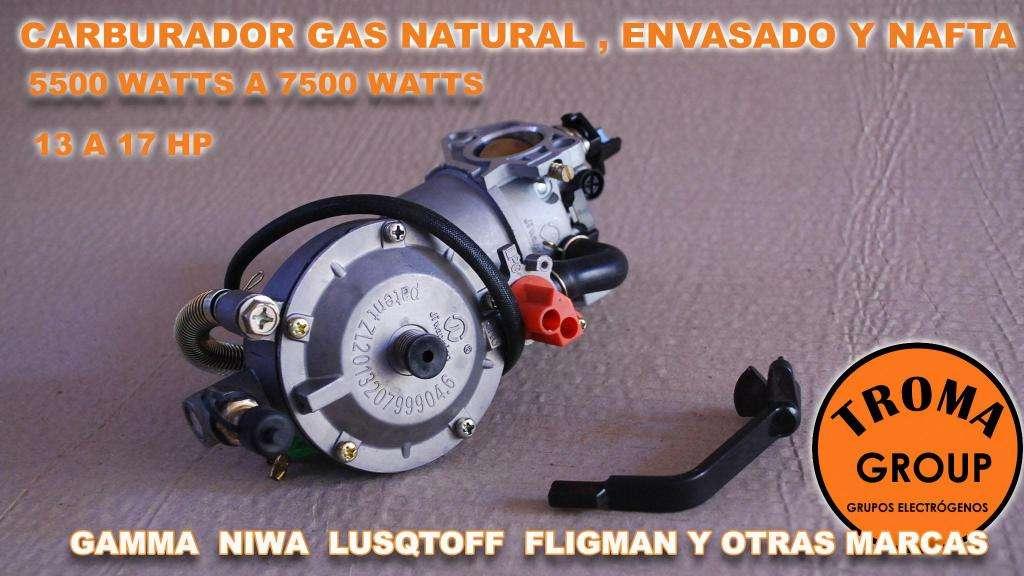 Carburador Nafta Gas Grupo Electrogeno 5500 / 8000 Watts