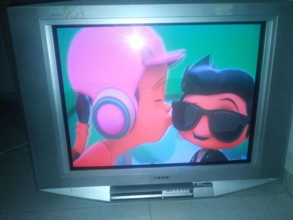 televisor Sony (trinitron) 29 pulgadas pantalla plana