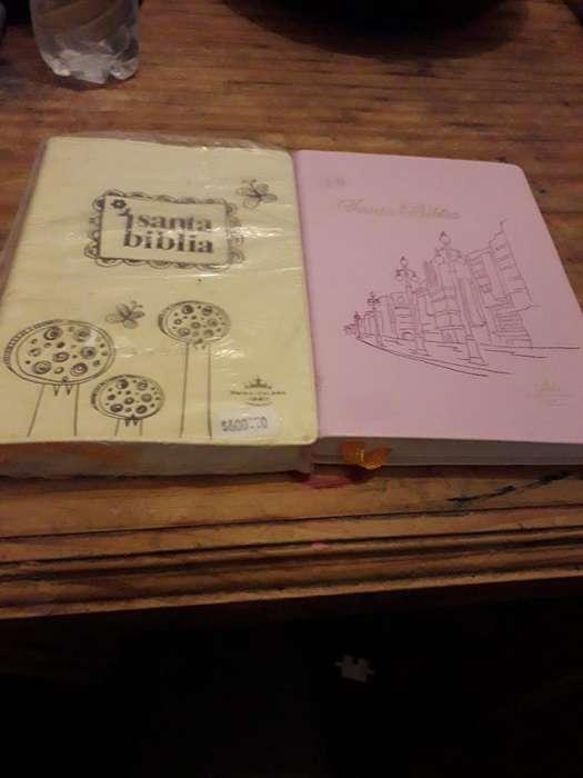 Biblias Rv 1960