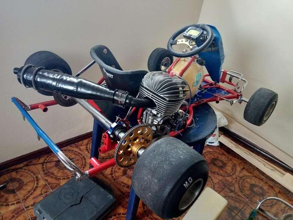 Go Kart Birel 125cc Homologado