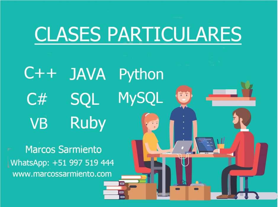 CLASES PROFESOR PARTICULAR DE PROGRAMACIÓN EN RUBY ON RAILS, JAVA, C, VISUAL BASIC .NET, SQL SERVER, MYSQL, EXCEL