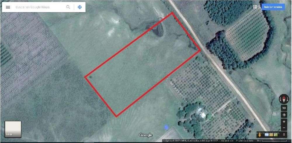 Vendo 2 hectáreas de campo ideal para casa quinta o inversión
