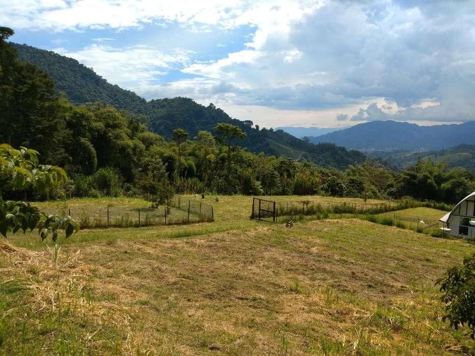 Pereira, hermoso lote para casa en el <strong>campo</strong>, centro poblado Las Mangas, cuenca del rio Otún.