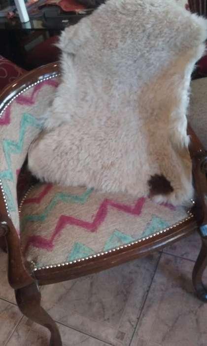 preciosas pieles de oveja 599 pesos