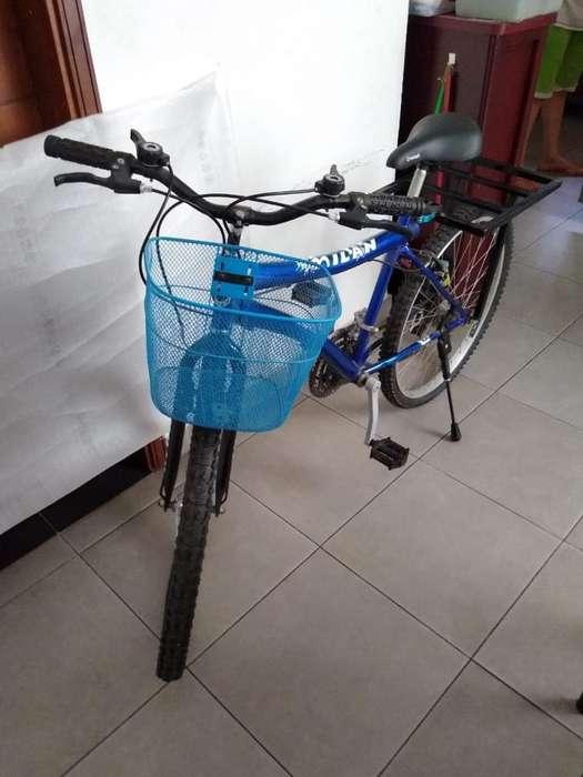 Vendo 13 Bicicletas Nuevas