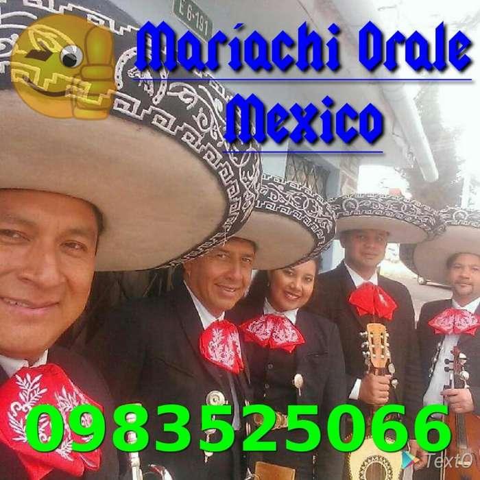 Mariachi Profesional Órale México