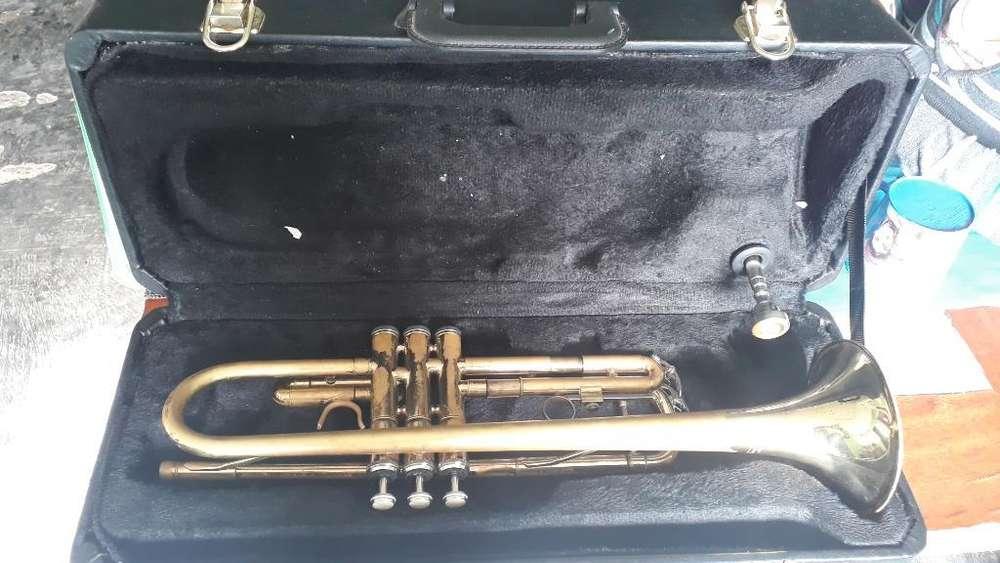 Se Venden Instrumentos en Muy Buen Estad