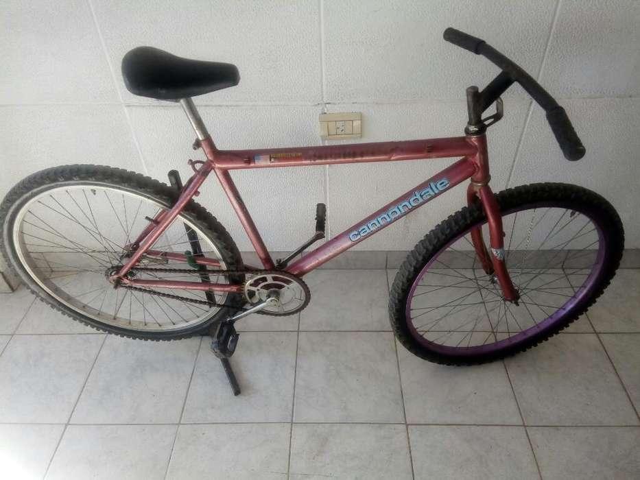 Bici Rod26