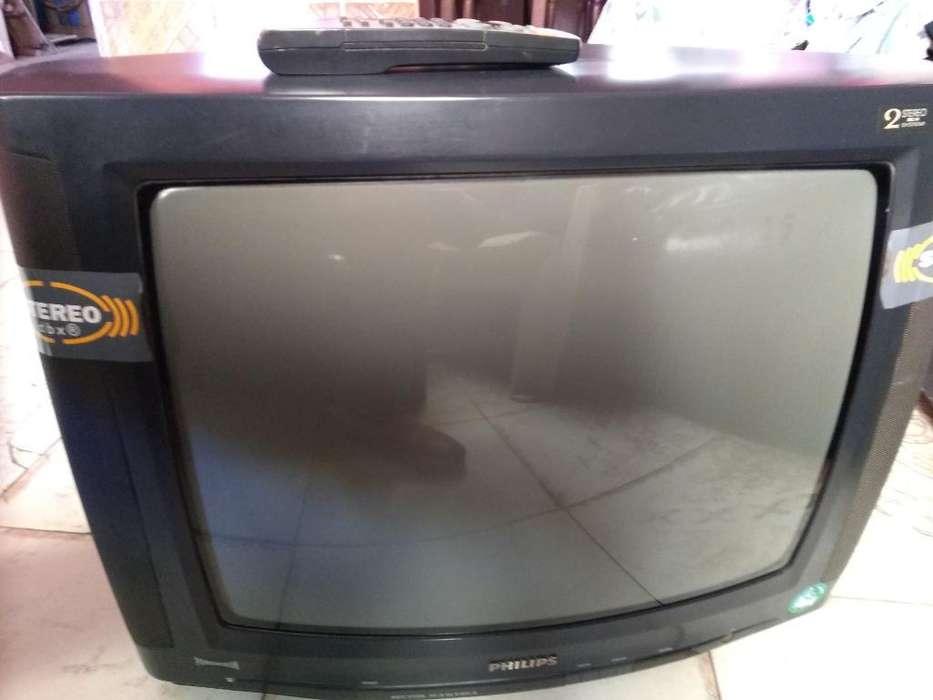 Televisor Philips 21 Pulgadas con Contro