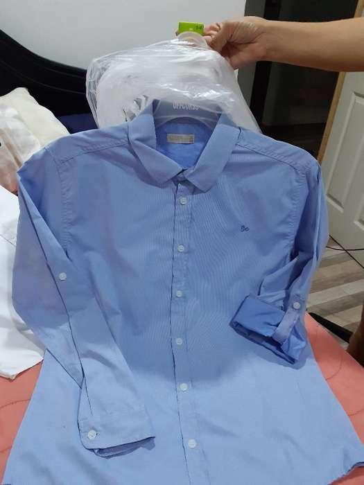 Camisa Offcors Talla 14 50.000