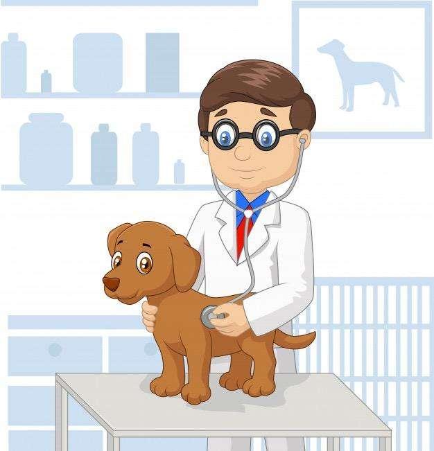 Medic@ <strong>veterinario</strong>