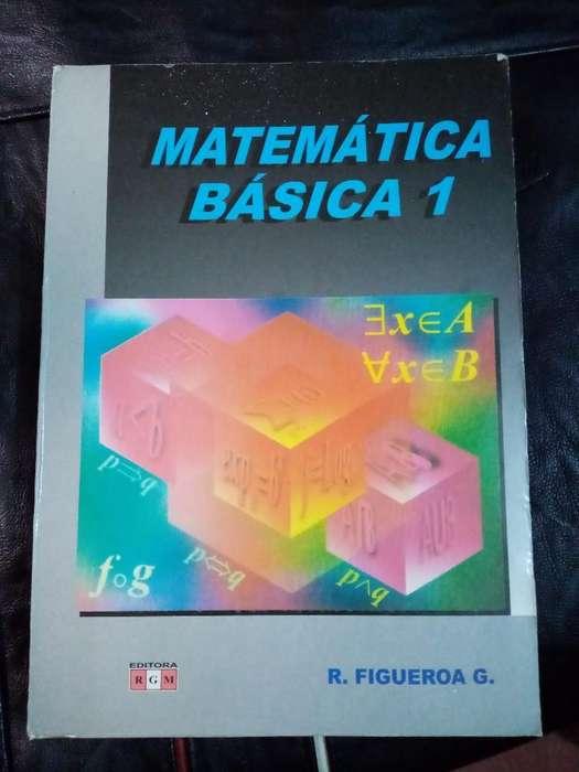 Libro Matemática Basica 1