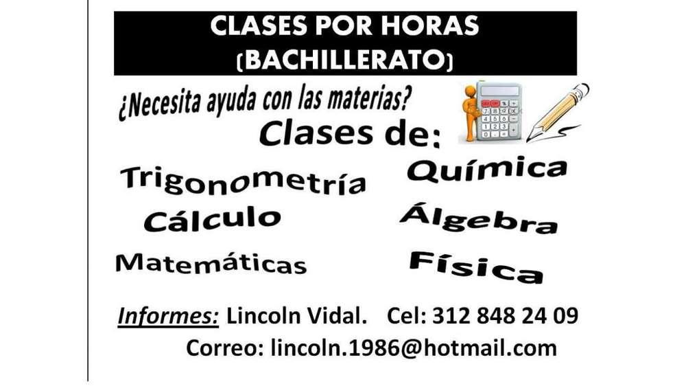Clases personalizadas Lincoln, por horas, primaria y bachillerato, Pereira y Dosquebradas