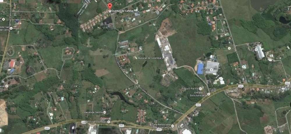 Lote en Venta, Pereira, R. Ref 90115-0 - wasi_272552