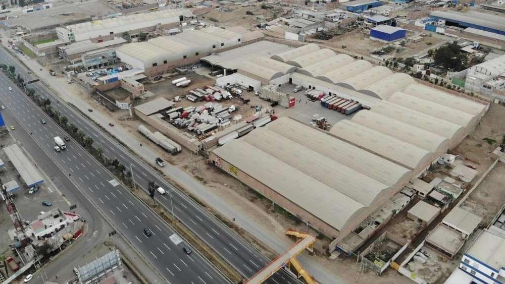 Alquiler Terreno Industrial Panamericana Sur km 19.5 - Villa el Salvador