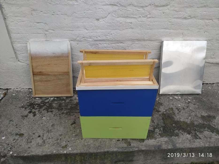 Colmenas de abejas, marcos, material apícola en general