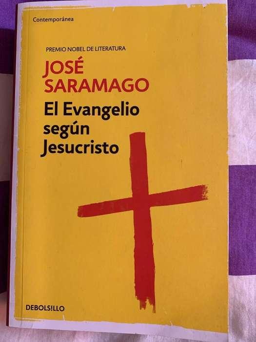 Libro El Evangelio segun Jesu Cristo