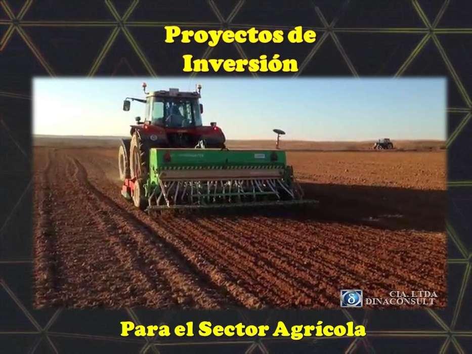 PROYECTOS DE INVERSION PARA EL SECTOR AGRICOLA