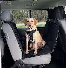Forro de asientos para perro.