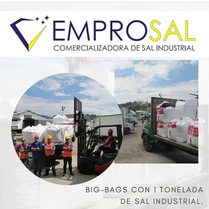 Sal Industrial en Big Bags