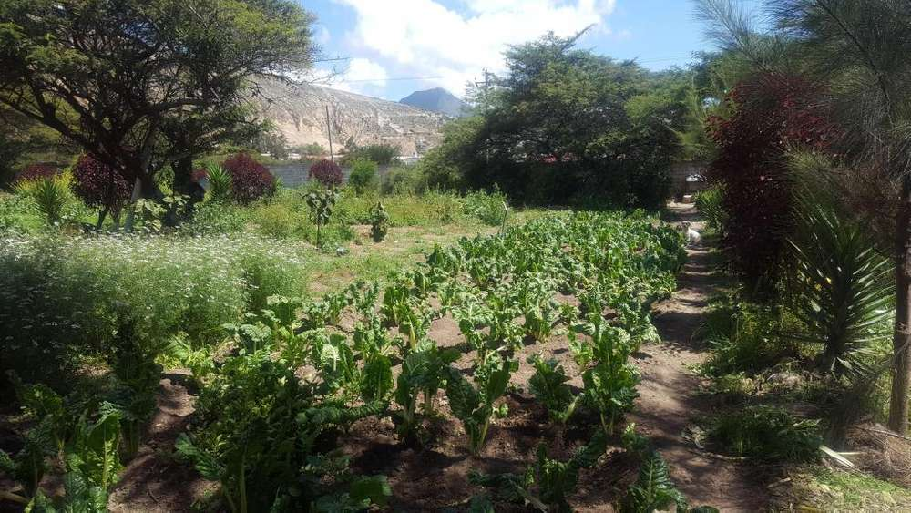 Terrenos <strong>plano</strong>s en venta, sector San Antonio de Pichincha, Pomasqui
