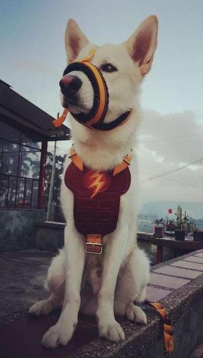 Pechera Cuero Super Heroe
