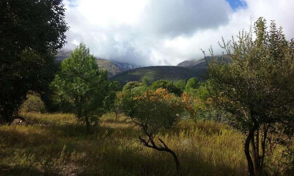 Terrenos En Los Hornillos - San Javier - Traslasierra - Córdoba