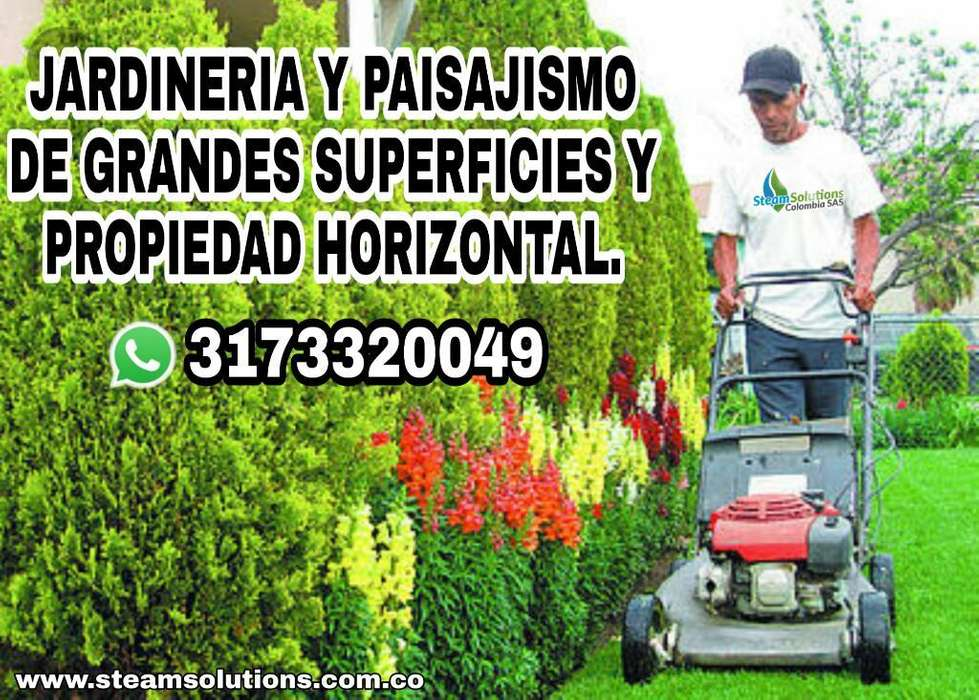 Servicio de Jardinería Y Paisajismo
