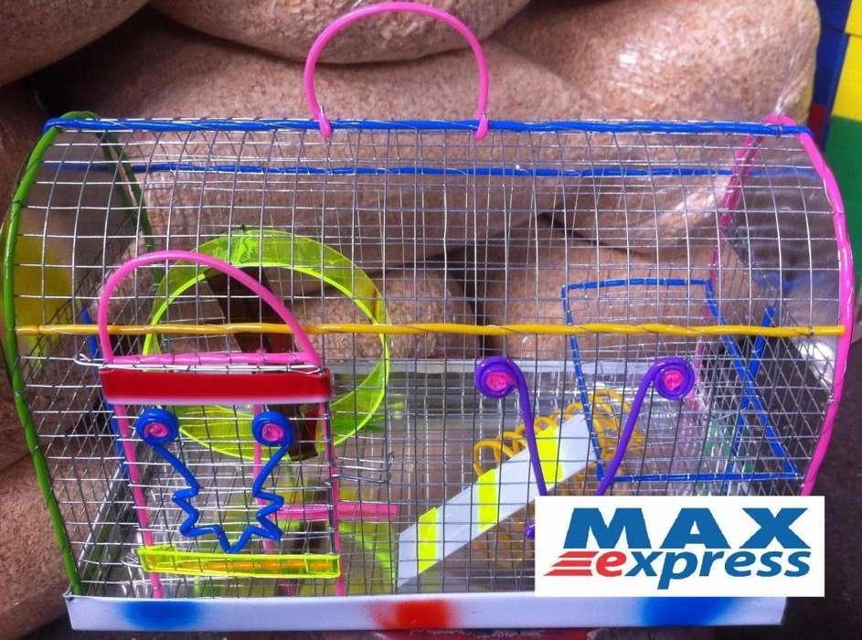 Jaula Hamstera con Entre Piso Rueda Ejercitadora Viruta 30x22x19