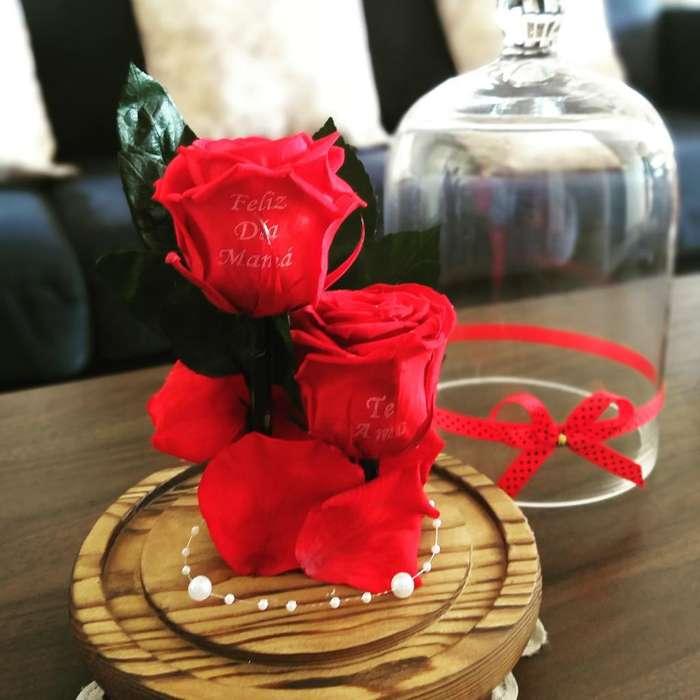 Rosas Preservadas para Mamá